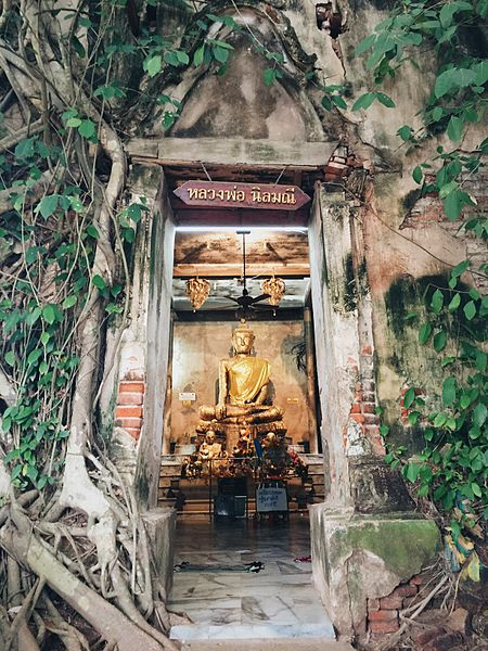 We've rounded up some of the best quarantine activities. Take virtual tours around Thailand or book an online experience on Airbnb.